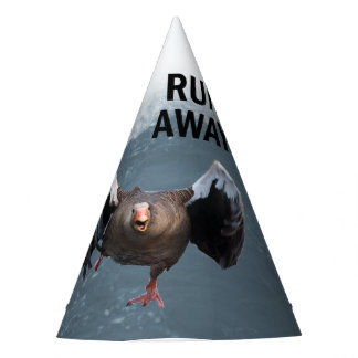Run away party hat