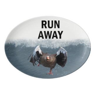 Run away porcelain serving platter