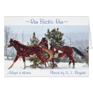 """""""Run Buckie Run"""" Card"""