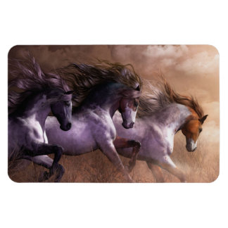 Run to Freedom Premium Flexi Magnet