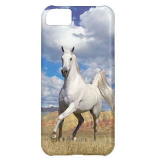 Run Wild Run Free iPhone 5C Cover