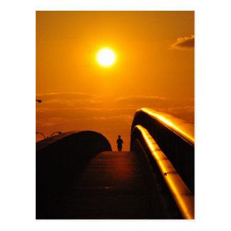 Runner Sunset Delight Bridge Daytona Postcard