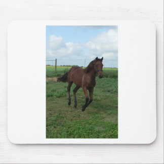 Running Colt Mouse Pad