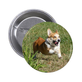 Running Corgi Button