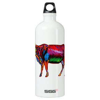 Running Fiesta Water Bottle