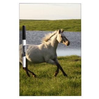 Running Free Dry Erase White Board