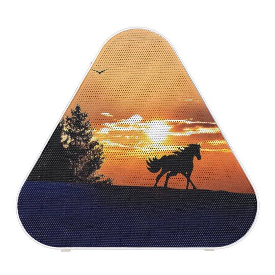 running horse  - sunset horse - horse speaker
