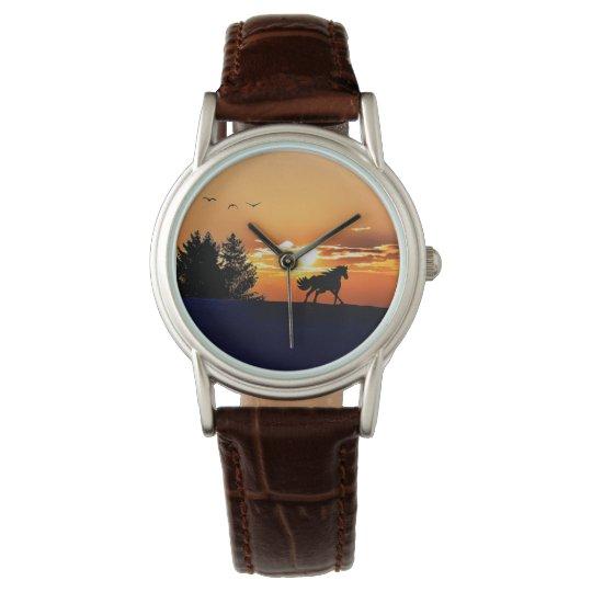 running horse  - sunset horse - horse watch