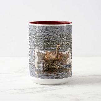 Running Mute Swan Wild Bird HDR Photo Two-Tone Coffee Mug