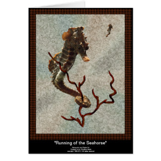 Running of the Seahorse Notecard