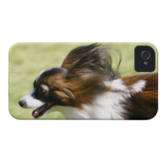 Running Papillon Case-Mate iPhone 4 Cases