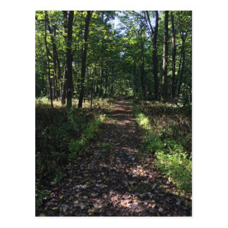 Running Trails are the best Trails Postcard