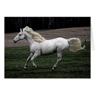 Running White Horse Card