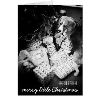 Rupert the Beagle Christmas Card