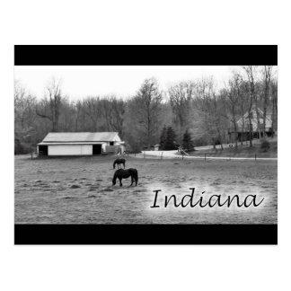 Rural Indiana Postcard