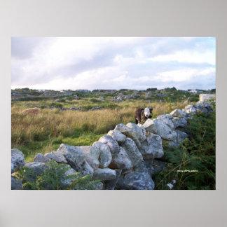 Rural Ireland Poster