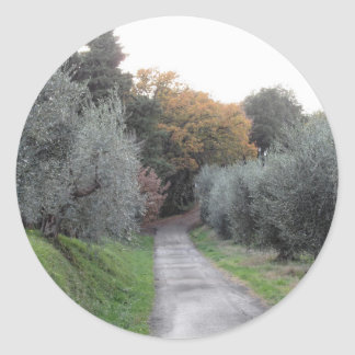 Rural landscape with asphalt road in the autumn classic round sticker