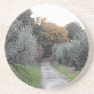 Rural landscape with asphalt road in the autumn coaster
