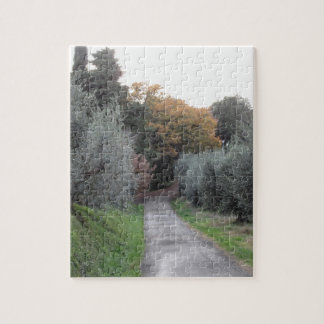 Rural landscape with asphalt road in the autumn jigsaw puzzle