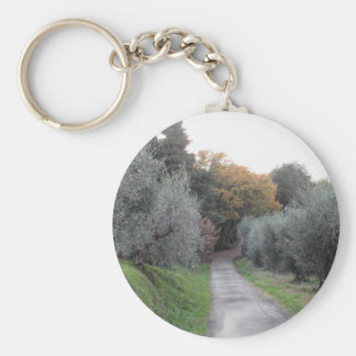 Rural landscape with asphalt road in the autumn keychain