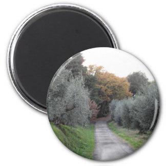 Rural landscape with asphalt road in the autumn magnet