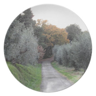 Rural landscape with asphalt road in the autumn plate