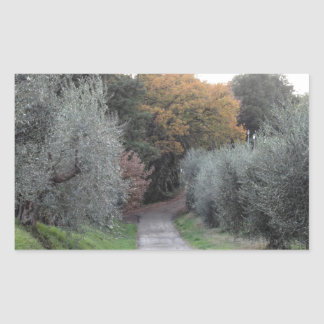 Rural landscape with asphalt road in the autumn sticker