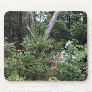 Rural Pine Trees Mouse Pad