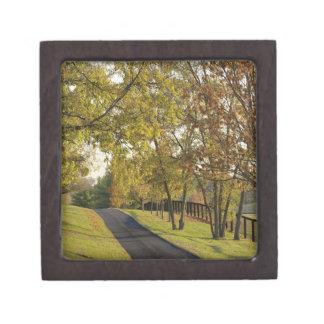 Rural road through Bluegrass region of Kentucky 2 Premium Trinket Box