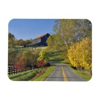 Rural road through Bluegrass region of Kentucky Rectangular Photo Magnet