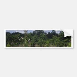 Rural Scene Bumper Sticker