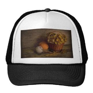 Rural Still Life Hats