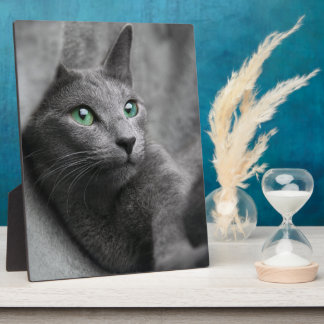 Russian-blue-cat-with green eyes plaque