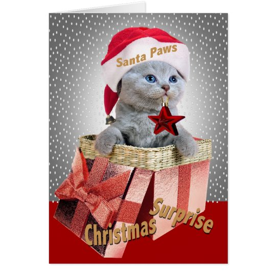 Russian Blue Christmas Surprise cards