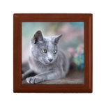Russian Blue Gift Boxes
