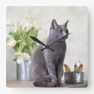 Russian Blue Square Wall Clock