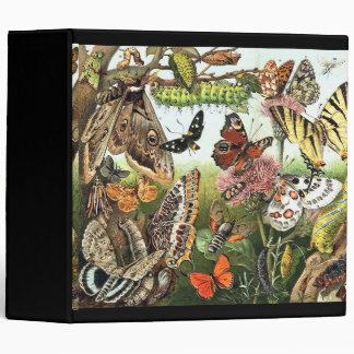 Russian Butterflies Insects Wildlife Avery Binder