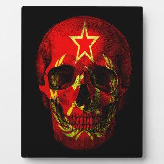 Russian flag skull plaque