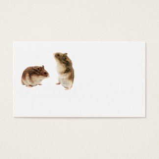Russian Hamsters Business Cards - 100 pack