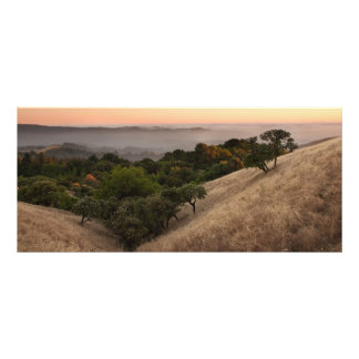 Russian Ridge in Summer Rack Card