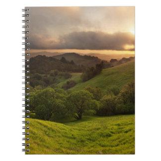Russian Ridge on Easter Sunday Notebooks
