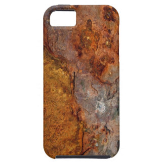 Rusted iPhone 5 Cases