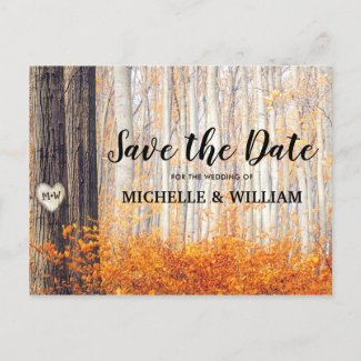 Rustic Autumn Fall Leaves Save the Date Announcement Postcard