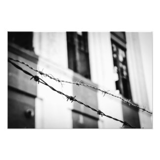 Rustic Barbwire Photo Print