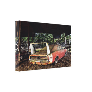 Rustic Barn Find - Diamond In The Ruff Canvas Print