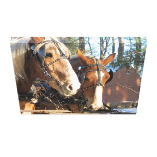 Rustic Country Home Horse Canvas