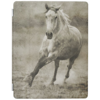 Rustic Galloping Andalusian Horse iPad Cover