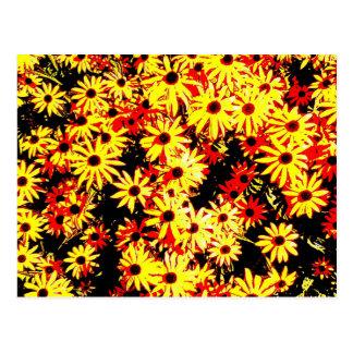 Rustic Golden Yellow Brown Eyed Susans Wildflowers Postcard