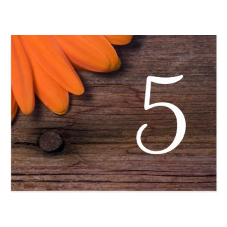 Rustic Orange Daisy Country Wedding Table Numbers Postcard