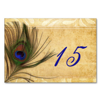 Rustic Peacock Feather wedding table numbers Table Cards